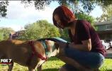 愛犬被偷三年 女子不放棄終找回 見面那一刻淚奔