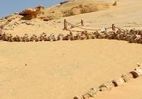 鯨魚谷是怎樣變成沙漠的?