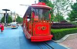 距市區90分鐘的4A景區,竟是上海人的寶藏樂園,滬漂族的釋壓聖地