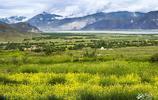 舊西藏最豪華的莊園,歷時26年打造,解放後曾做為叛亂據點被剿