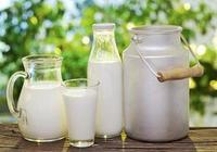 科普喝牛奶的小知識:早上喝還是晚上喝?一天喝多少合適?飯前喝還是飯後喝?空腹喝牛奶真的不好嗎?