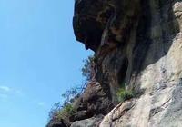 高難度純自然的崖蜂蜜採集