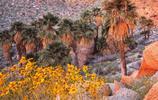 風景圖集:山水風景之加利福尼亞