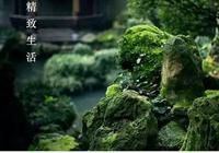 只有中國人才懂,外國人都不知,它是方寸間的桃花源,是空谷