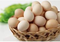 土雞蛋比普通雞蛋更有營養嗎?
