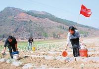 在農村你們那裡是怎麼澆地灌溉的?