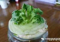 """這4種蔬菜,吃剩的""""菜根""""不要扔,往盆裡一種,種出綠色蔬菜來"""