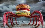 創意美食漫畫 漢堡與脂肪