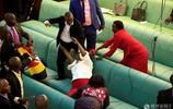 烏干達國會討論變成大亂鬥