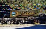 香格里拉的高原明珠——普達措國家公園