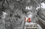 湖南張家界:霧凇美景引客來