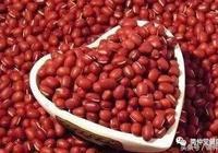 赤小豆是女性健康的好朋友