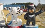 2018年韓國平昌冬奧會吉祥物:白老虎和亞洲黑熊