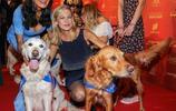 慈善晚會:美女與狗哥們攜手出席,然而全場的聚焦點竟然在別處!