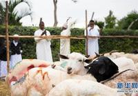 內羅畢穆斯林慶祝古爾邦節
