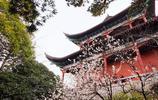 圖蟲風光攝影:晴川歷歷漢陽樹,芳草萋萋鸚鵡洲