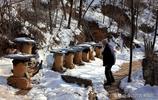 晉南72歲老人深山養一種美味,大雪後城裡人冒險驅車百里只為品嚐