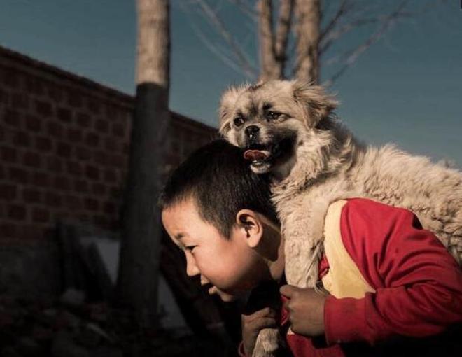 實拍8歲男孩心酸生活,奶奶病重去世,他只能與狗為伴