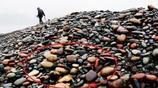 大爺路邊撿到一石頭,提出要賣價十萬,大爺:一分也不少