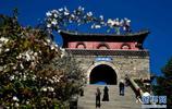 泰山位於中國山東省中部,初夏時節風景如畫,吸引遊客參觀遊覽