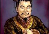 晉武帝司馬炎明知太子司馬衷智商低下為什麼還要選他做皇帝?