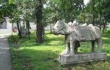 張作霖的陵墓,舊時王謝堂前燕