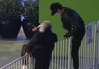王源魏大勳為翻越欄杆致歉,稱公眾人物應當以身作則