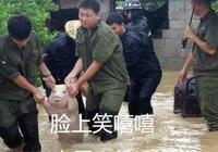 這隻在洪水中獲救的小豬火了 被網友做成表情包