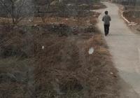 為什麼有人感覺山東棗莊很貧窮?