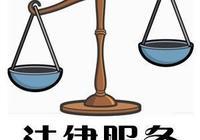 法律服務從業人員:律師與基層法律服務工作者