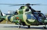 中國直升機的直家族