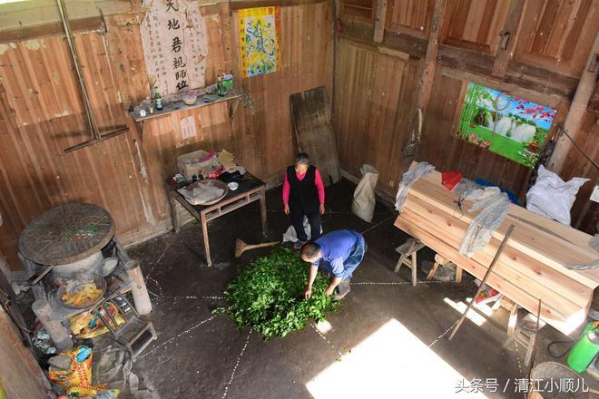 心疼!農村兩老人拼命做農活賺錢:只為送女兒讀大學