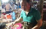 農民夫妻縣城菜場賣雞,每天工作13個小時,年收入遠比外出打工多