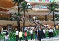 國家級恐龍化石展重磅來襲,珍稀恐龍化石空降奧山世紀廣場!