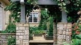 家裡庭院有地方,必須要種一棵這樣的果樹,美觀又有格調
