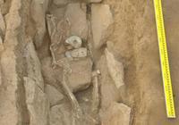 實拍5000年前墓地出土的無頭首領,陪葬有玉豬龍和權杖