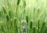 """為什麼有人說""""小滿""""是中國最有智慧的節氣?"""