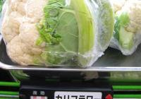 日本蔬菜貴,一個西紅柿13塊錢,說一說日本的三農問題