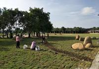汕頭北郊公園國慶前全面完工對外開放
