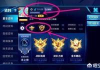 """近日網傳《王者榮耀》一個8萬場的""""馬化騰""""玩家,對於這件事你怎麼看?"""