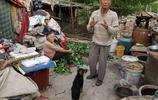 每月能領3份錢的7旬農村老人如今養羊為生,背後故事讓人心酸