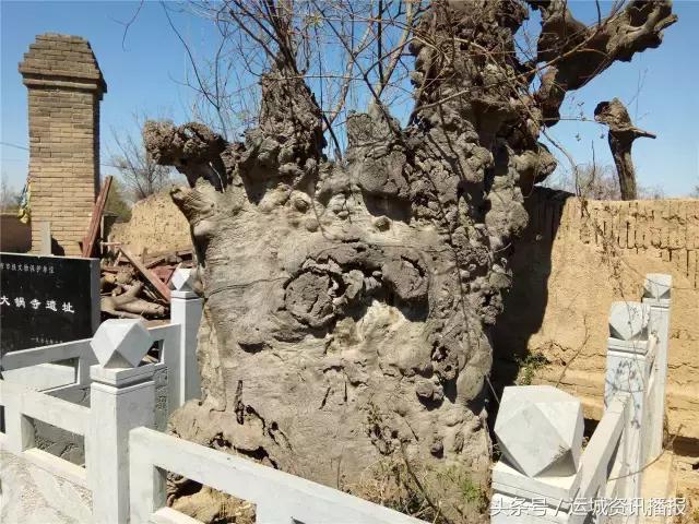 運城一座院落盡毀的寺廟遺址卻連外地人都趕來求拜