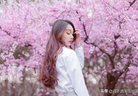 花兒曾經落在我的窗前「春天最美的情詩 溫暖 浪漫 抒情」