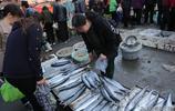 五一封海後 蠣蝦、蝦虎、八帶、筆管等一些活海鮮將暫別市民餐桌
