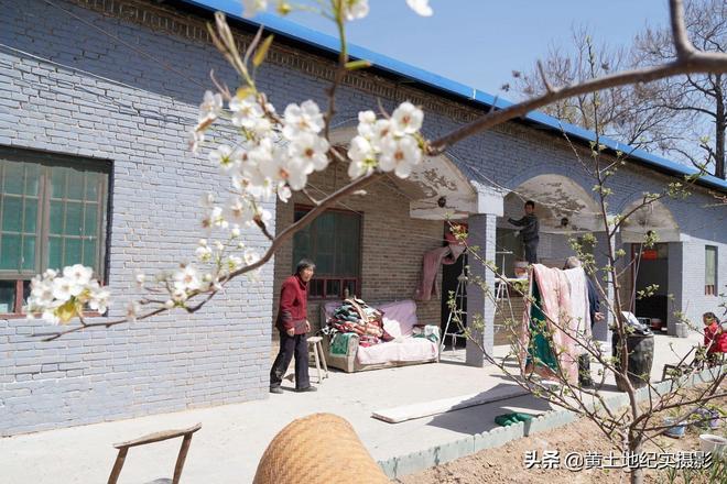山西農村7旬老人花5萬元裝潢小院,看看美成啥樣