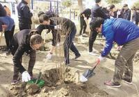 正陽街道舉行植樹活動