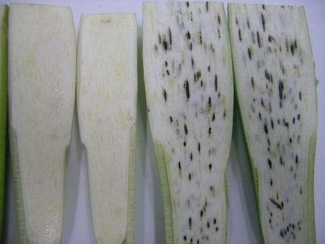 我們吃的茭白到底是什麼?裡面居然是真菌