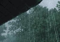 本週六,通城暴雨大風來襲!