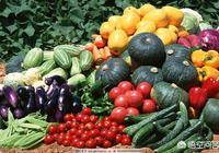 施用人糞尿的蔬菜你敢吃嗎?