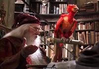 《哈利波特》背後的神話和民間傳說